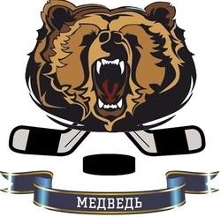 Медведи-10