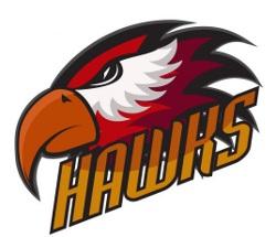 Gold Hawks-11